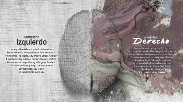 hemisferio derecho del cerebro